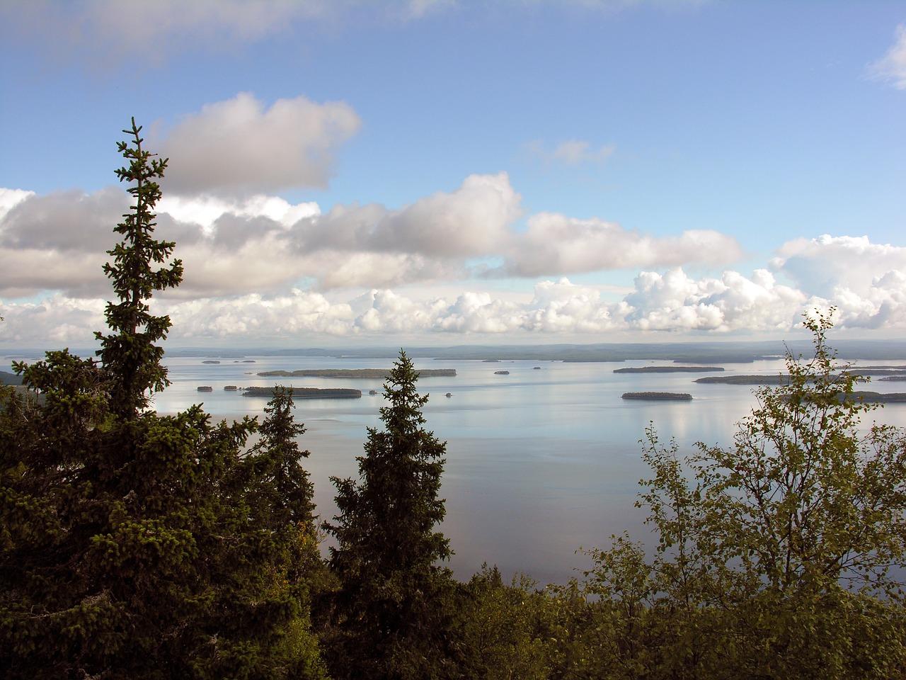 Parco Nazionale di Koli, Finlandia
